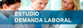 Estudio Demanda Laboral